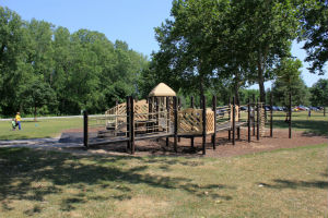 illinois horseshoe lake state park playground